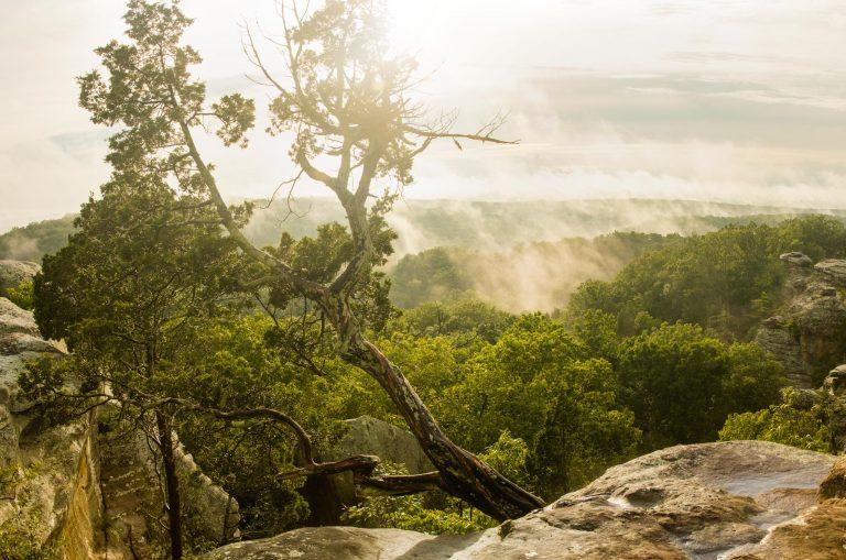 Besondere Aktivitäten Illinois Starved Rock State Park Tom on Tour 768x509 - Besondere Unternehmungen in Illinois: Unsere Top 5!