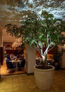 Bombay Layout tree of life 214x300 - Taj Cape Town, Kapstadt