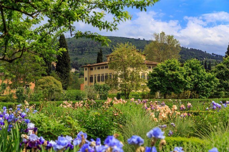 Iris Garden   Noble Villa on the background 768x512 - Villa La Massa, Florenz