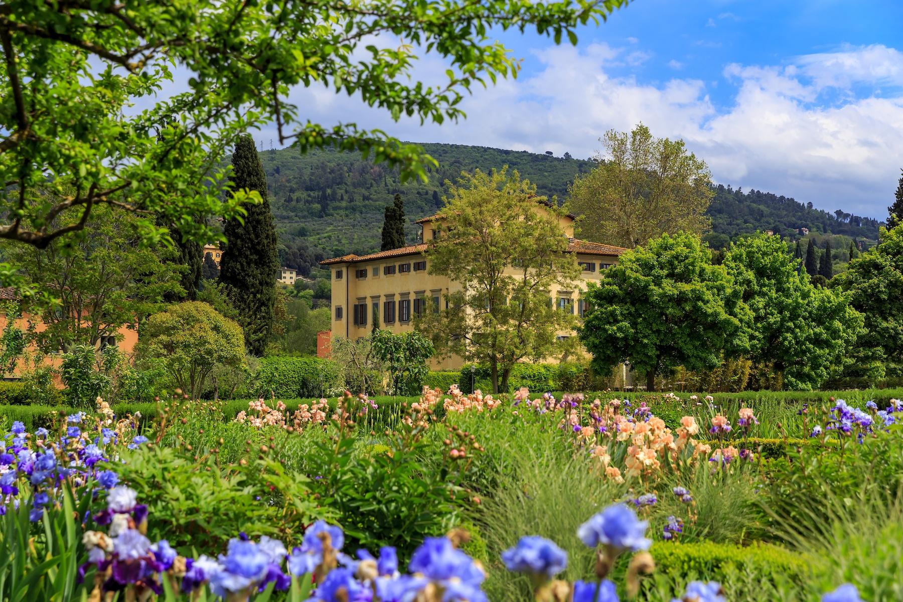 Iris Garden   Noble Villa on the background - Villa La Massa, Florenz