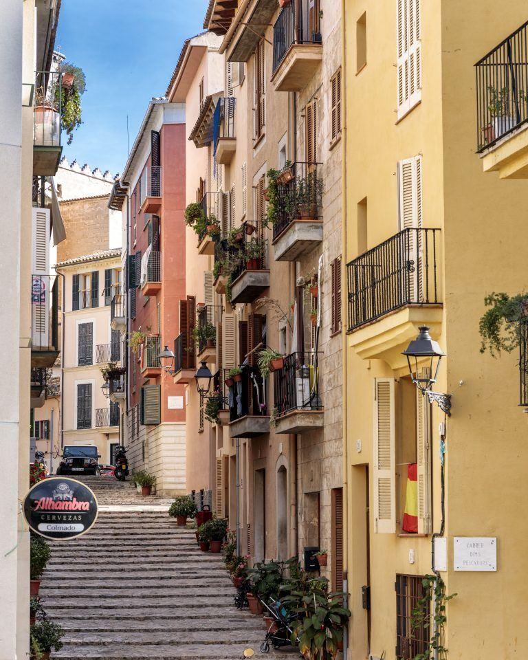 960dc7186a3a429ca28c0e463a30c85e 768x960 - Palmas kosmopolitisches Viertel Santa Catalina