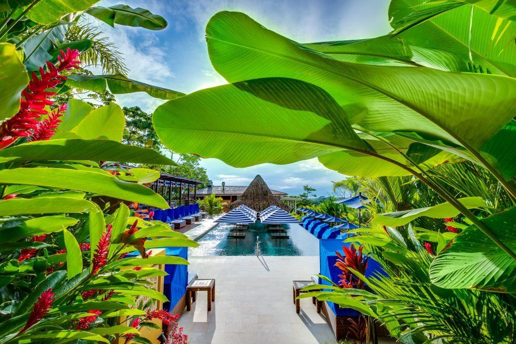 Nayara Springs Pool mit grün